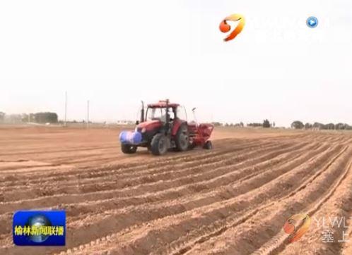 定边县:机械化耕作助推农业产业提质增效