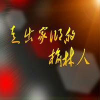 走出家乡的榆林人 2016-11-29