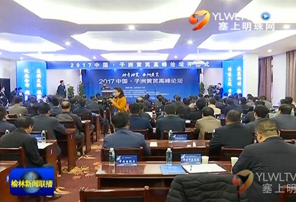 点击观看《2017中国·子洲黄芪高峰论坛举行》